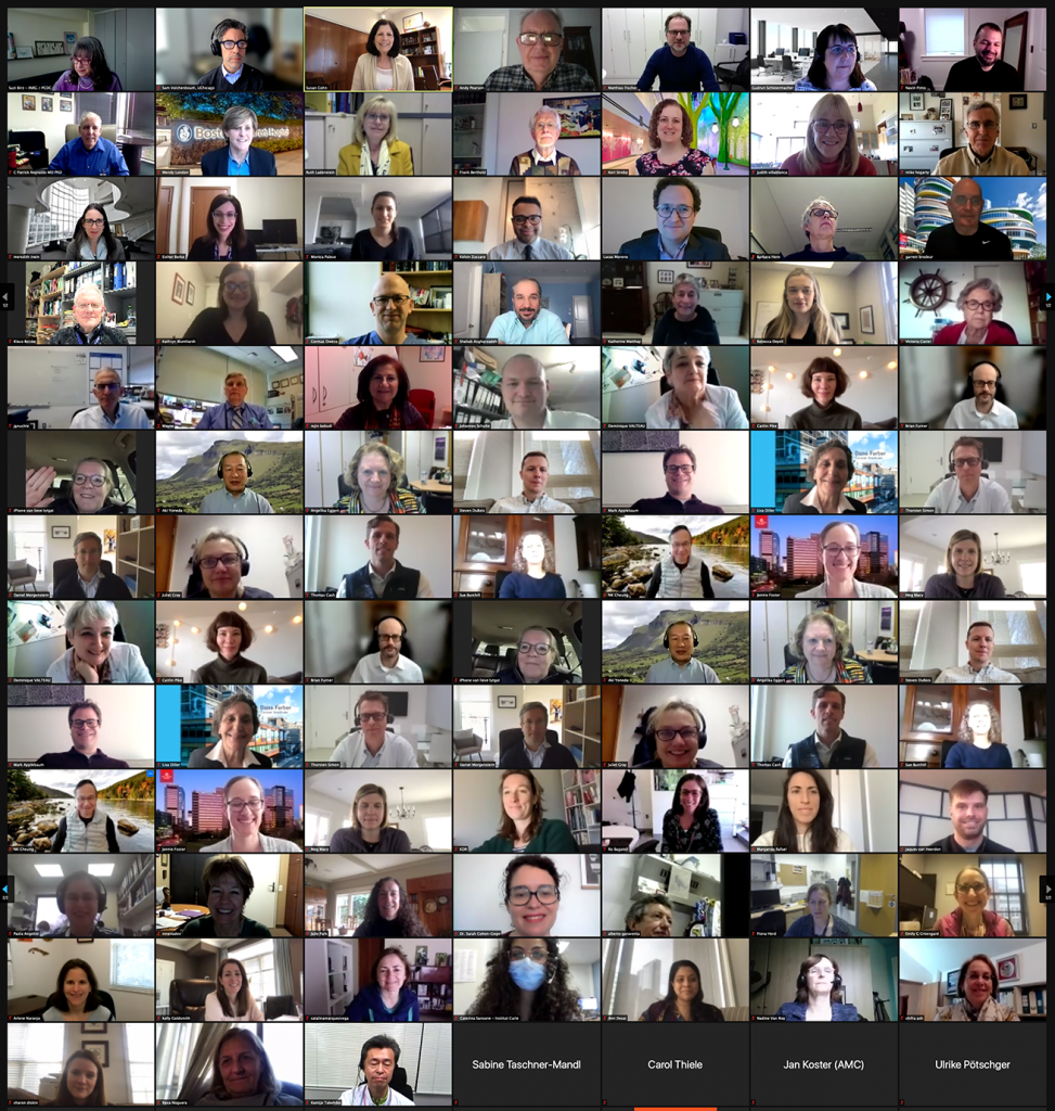 Zoom screenshot of INRG virtual meeting attendees