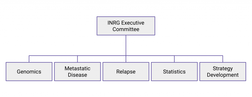 Organizational Chart showing committees for Genomics, Metastatic Disease, Relapse, Statistics, and Strategy Development reporting to INRG Executive Committee
